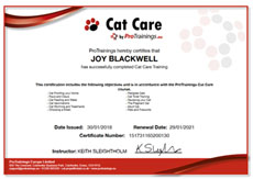 CAT CARE TRAINING